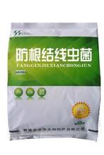禾盛根结线虫防治菌微生物有机肥菌种菌剂发酵剂
