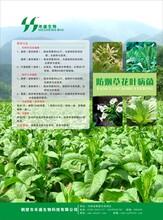 禾盛有机肥菌剂烟草黑径畏菌剂有机肥专用菌剂土壤调理剂