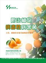 烟草根黑腐净-菌肥、有机肥发酵菌种、微生物制剂、有机肥专用菌剂