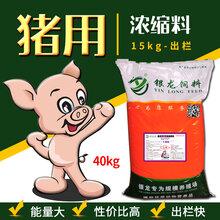 猪用浓缩料催肥快长的壮快速出栏