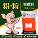 乳猪教槽料就选粉加粒教槽料猪爱吃不拉稀长的快