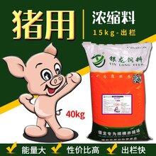 猪用浓缩料养猪好帮手就是省钱