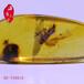 蜜蜡手串怎么盘,蜜蜡手串是如何展现其装饰功能的