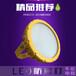 LED防爆灯(A型)
