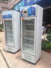 九五成新冷藏冰冻饮料啤酒展示柜低价出售,电炉也出售图片