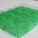厂家直销三维网垫绿化土工网价格