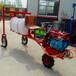 貴州畢節三輪機噴藥自走式打藥機供應商