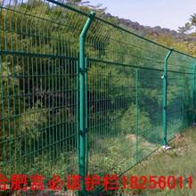 太湖县铁丝网围栏优秀太湖县铁丝网围栏厂家优质价廉