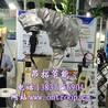 ABB焊接机器人防护服,耐高温安全环保