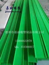 嘉盛利特08B-32B08A-32A聚乙烯链条导轨,尼龙链条导轨,耐磨链条导轨图片