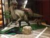 大型恐龙展模型出售厂家恐龙出租出售_展览