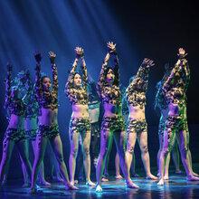 鹰潭舞蹈教练班收费标准,舞蹈教练班需要多少钱