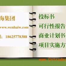 深圳代写可行性研究报告立项申请报告图片