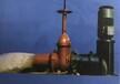 立式污水泵