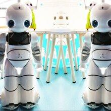 伊娃租赁舞蹈迎宾机器人V3.0图片