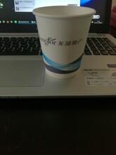 专业定制一次性纸杯,纸碗。印刷各类产品