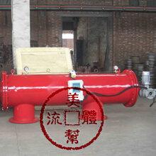 电动刷式过滤器DS-C,吸吮式过滤器