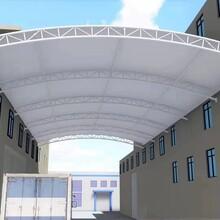 膜結構停車棚景觀棚遮陽棚制作圖片