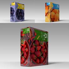 水果包装盒纸箱厂家
