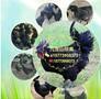 湖南脱温绿壳蛋鸡苗绿壳蛋鸡养殖特种珍禽动物养殖批发包邮图片