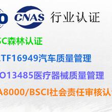 深圳售后服务认证费用,品牌认证图片