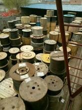 四川回收直埋光纜眉山上門回收24芯GYTA53光纜收購48B1.3光纖光纜圖片
