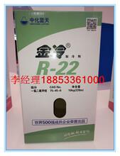 陕西氟利昂R22,空调冷库高纯度制冷剂F22图片