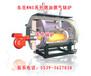 保定厂家供应WNS全自动卧式燃气蒸汽锅炉