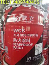 武立防火涂料、防火漆、钢结构防火涂料