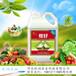 养根肥料根好根宜生冲施肥养主根生侧根养根好肥料