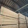 丹东木材加工厂