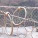 供西宁环形防护网和青海山体滑坡防护网详情