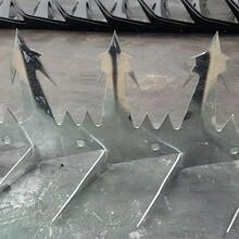 重庆奇形怪状的刺,江北阳台铁刺,防盗刺