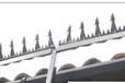 阳江优质防盗刺,护栏防盗刺钉