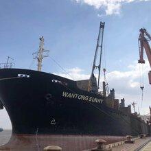 天津钢结构散货船出口物流公司
