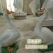 玻璃鸭子雕塑仿真鸭子公鸡动物雕塑养殖场摆件景观工艺品