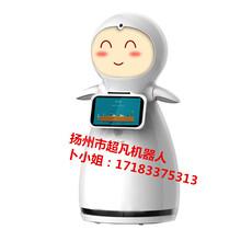 泰州,南通地区供应小雪机器人迎宾智能家居情感陪护学校展会