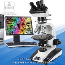 59XA-PC透射偏光显微镜