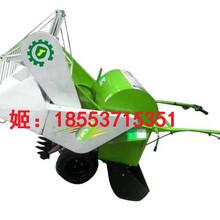 供应4LZ-0.3水田地水稻收割一体机图片