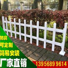 河南新乡pvc护栏绿化护栏批发/采购图片