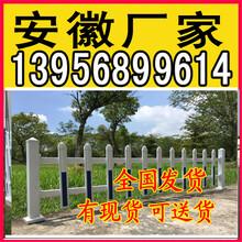 黔南三都水族自治pvc护栏围栏_草坪栏杆_仿木栏杆图片