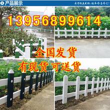 过年不打洋甘孜乡城县pvc护栏_草坪护栏_塑钢护栏图片