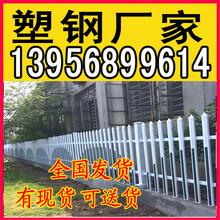 苍南县pvc塑钢护栏_绿化护栏_欢迎量大砍价图片