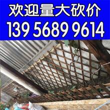 厂家欢迎三明明溪县塑料花园围栏_儿童防护栏_绿化隔离栏图片