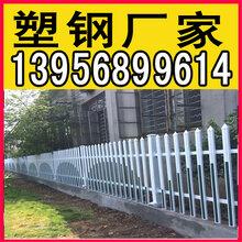 南阳桐柏绿化栅栏图片