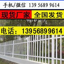宁波镇海pvc草坪栅栏,产量高生产厂图片