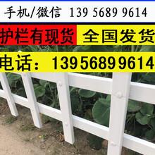 台州黄岩pvc草坪围栏生产厂家图片