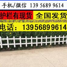 金华磐安草坪围栏多少钱每米易于安装图片