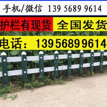 丽水遂昌pvc绿化栏杆,40-20售后一年图片
