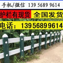 嘉兴南湖pvc塑钢围栏pvc草坪栏杆—30公分护栏图片现场可供图片